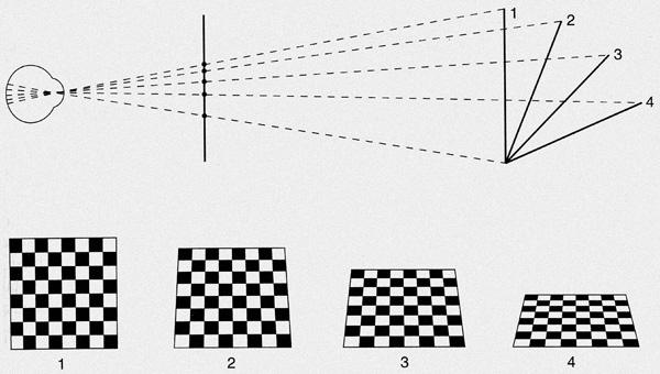 Figura 2. Costanza di forma.
